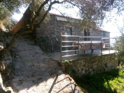 "Cottage House ""Tseros"" in the middle of a 200 acres Olive Grove - Mani Peloponesse"